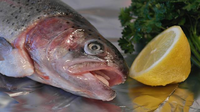 Przepis na zapiekankę z łososia z brokułami